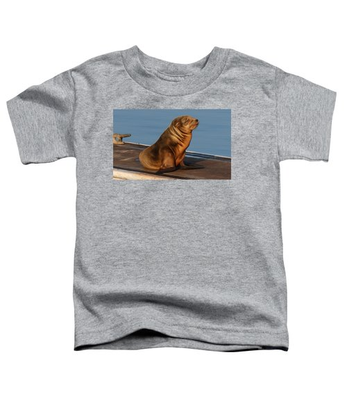 Sleeping Wild Sea Lion Pup  Toddler T-Shirt