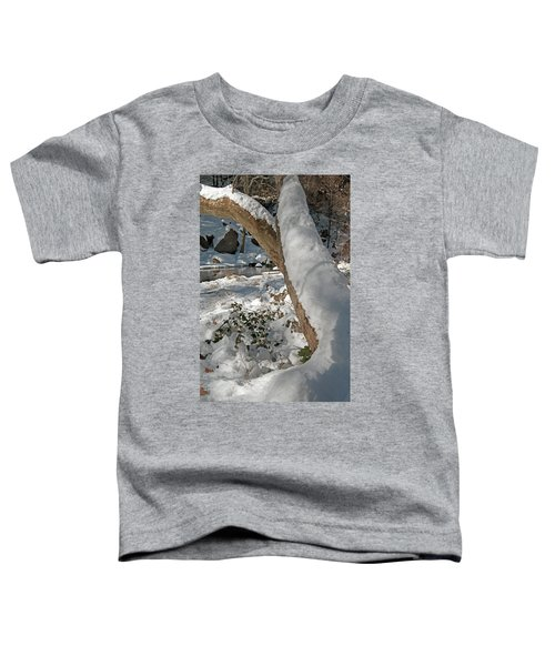 Snow Capped Toddler T-Shirt