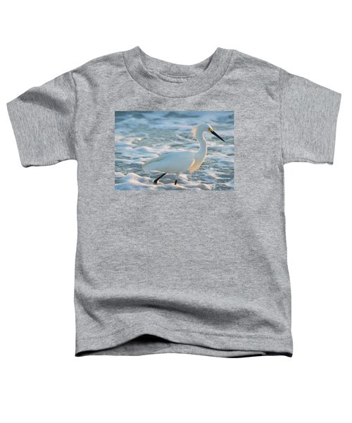 Snowy Siesta Key Sunset Toddler T-Shirt