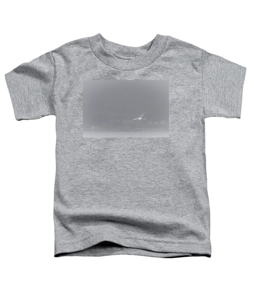 Soaring Home Toddler T-Shirt