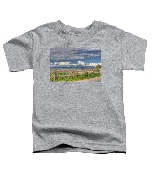 Spring Afternoon Toddler T-Shirt