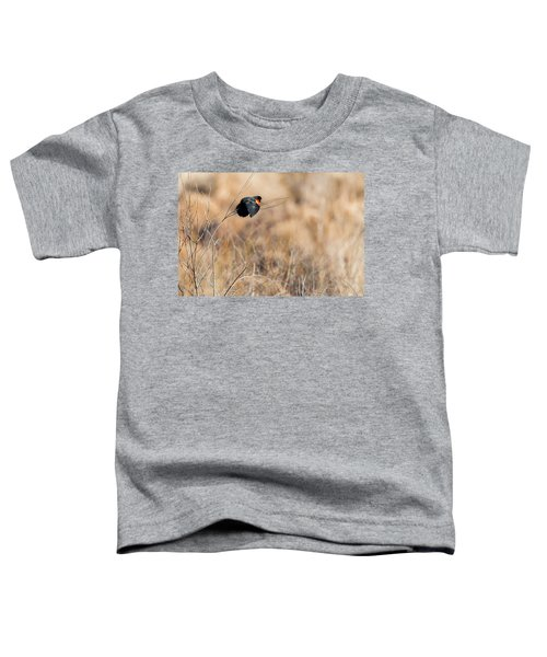 Springtime Song Toddler T-Shirt by Bill Wakeley