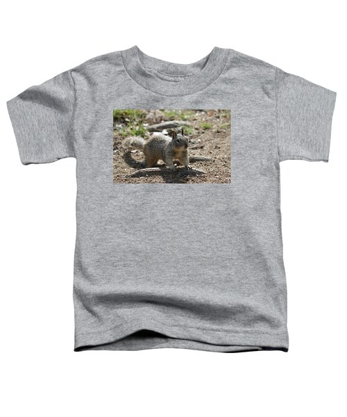 Squirrel Play  Toddler T-Shirt