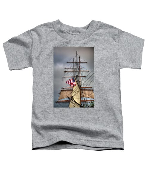 Star Of India Stars And Stripes Toddler T-Shirt
