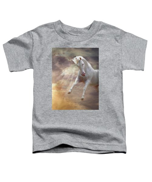 Stormy Toddler T-Shirt