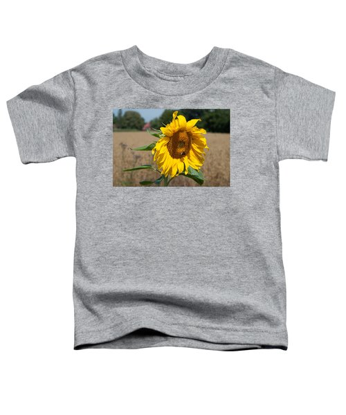 Sun Flower Fields Toddler T-Shirt