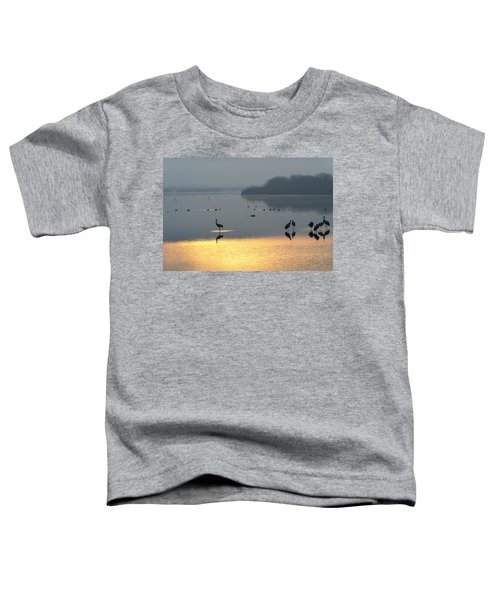 Sunrise Over The Hula Valley Israel 1 Toddler T-Shirt