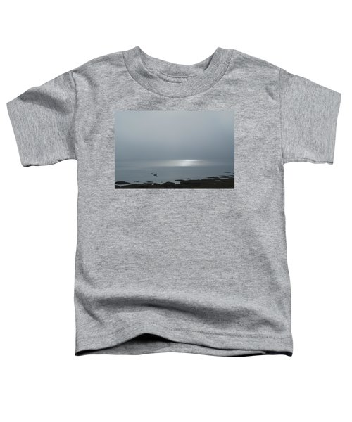 Swans At Sunrise Toddler T-Shirt