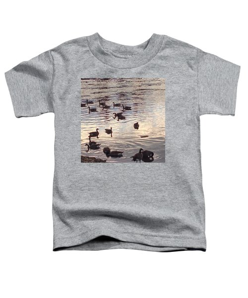The Gathering - Willamette River Geese Toddler T-Shirt