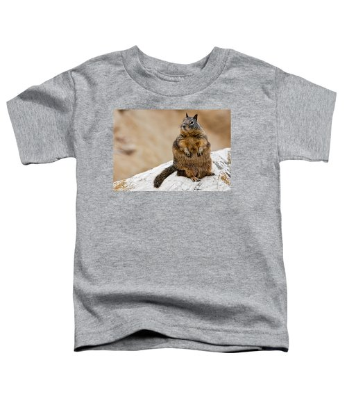 The Godfather Toddler T-Shirt