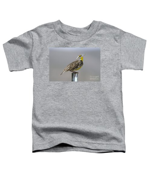 The Meadowlark Sings  Toddler T-Shirt by Jeff Swan