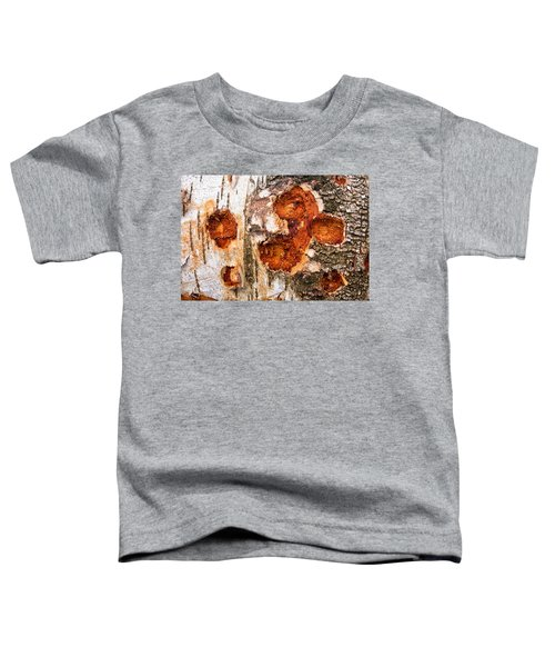 Tree Trunk Closeup - Wooden Structure Toddler T-Shirt by Matthias Hauser