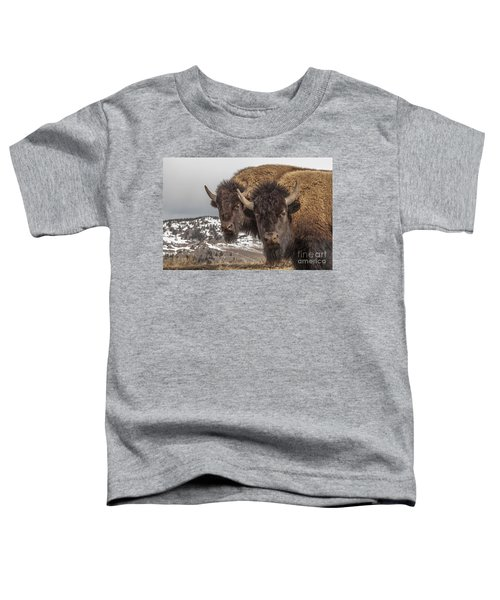 Two Bison Toddler T-Shirt