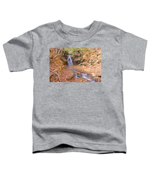 Waterfall In The Fall Toddler T-Shirt