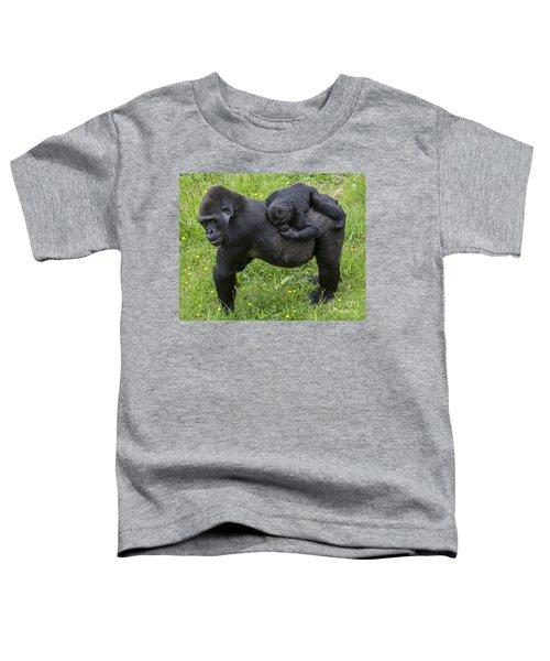 Western Lowland Gorilla 2 Toddler T-Shirt
