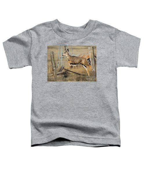What Fence Toddler T-Shirt