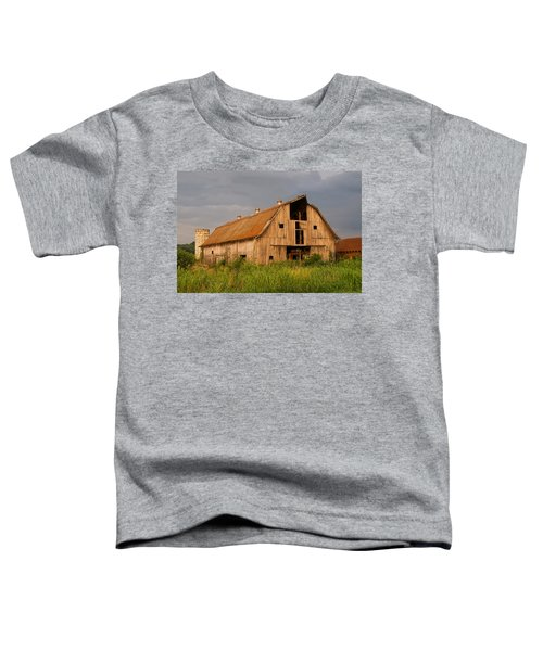 What Happened To The American Dream Toddler T-Shirt