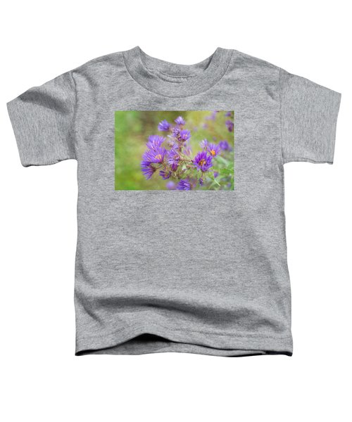 Wild Flowers In The Fall Toddler T-Shirt