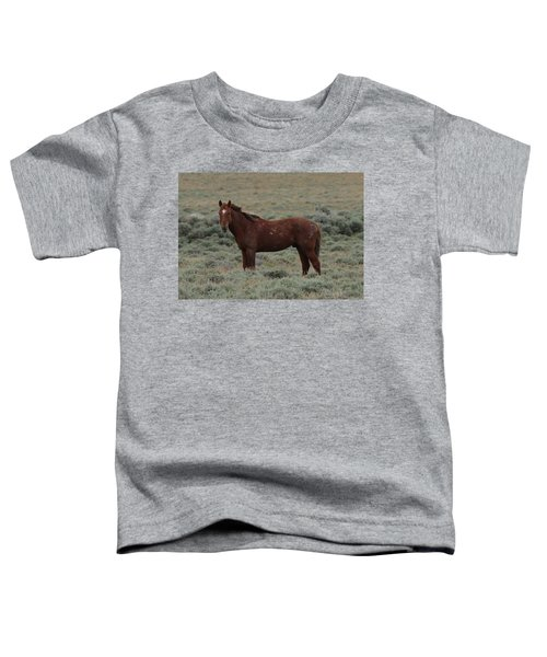 Wild Scars Toddler T-Shirt