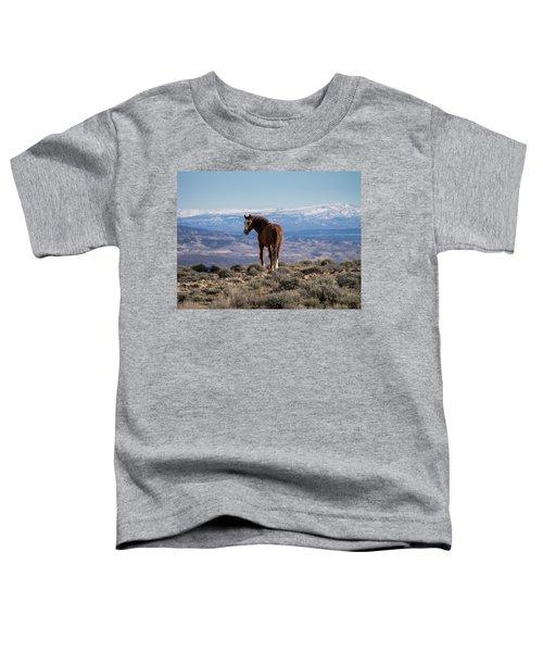 Wild Stallion Of Sand Wash Basin Toddler T-Shirt