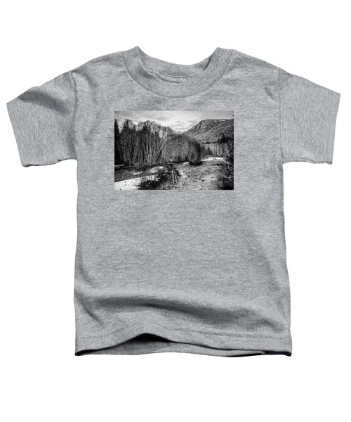 Winter Backroads Englishman River Toddler T-Shirt