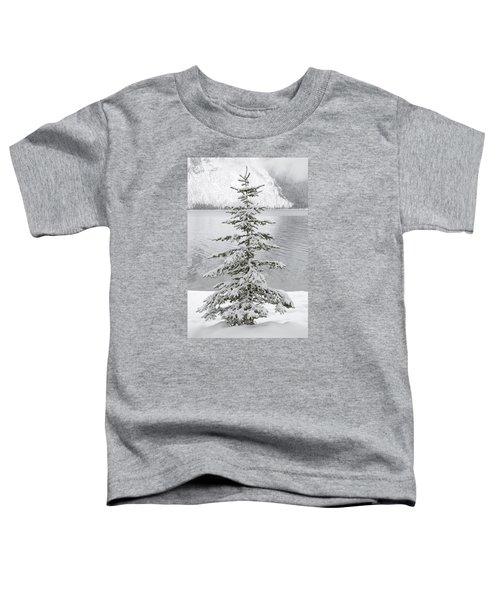Winter Decor Toddler T-Shirt