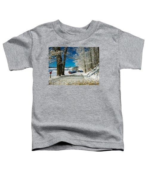Winter In Vermont Toddler T-Shirt
