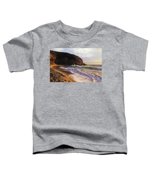 Winter Swells Strands Beach Toddler T-Shirt
