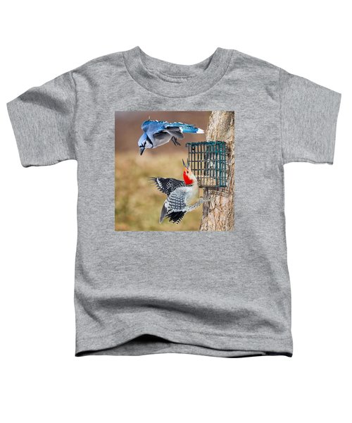 Woodpeckers And Blue Jays Square Toddler T-Shirt by Bill Wakeley