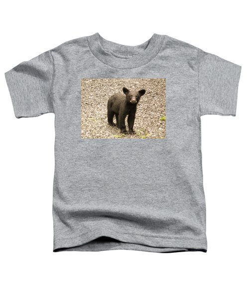 Young Cub Toddler T-Shirt
