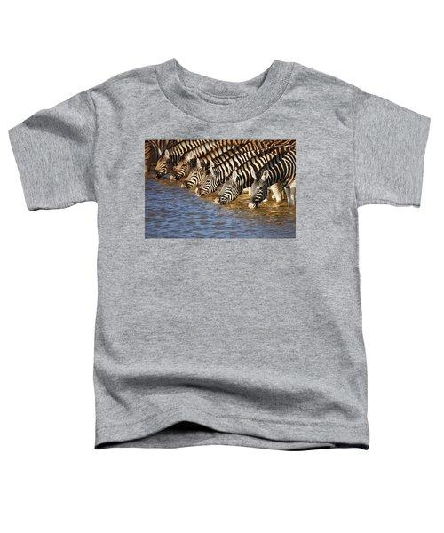Zebras Drinking Toddler T-Shirt
