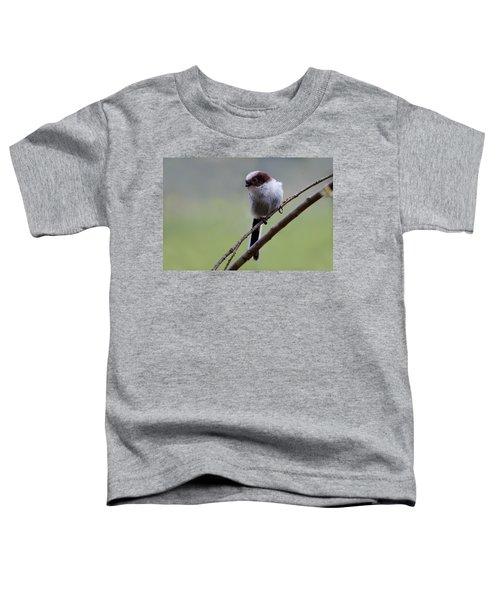Long Tailed Tit Toddler T-Shirt
