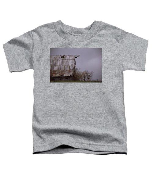 An American Pointer Toddler T-Shirt