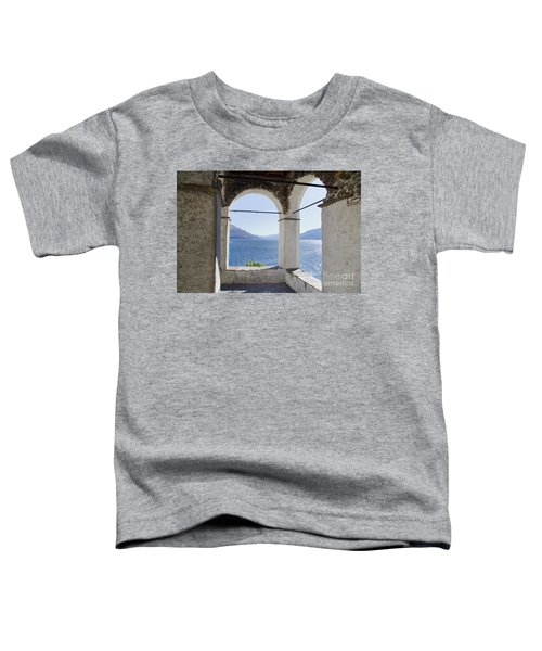 Arch And Lake Toddler T-Shirt