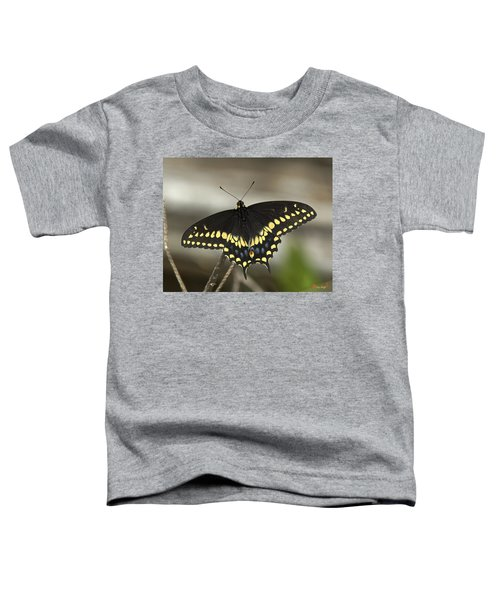 Black Swallowtail Din103 Toddler T-Shirt