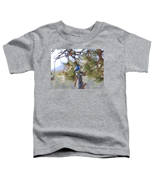 Blue Boy Toddler T-Shirt