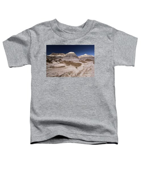 Blue Mesa At Petrified Forest Toddler T-Shirt