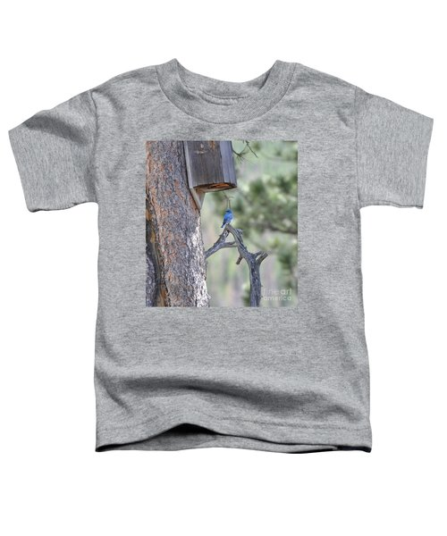 Boy Blue Toddler T-Shirt