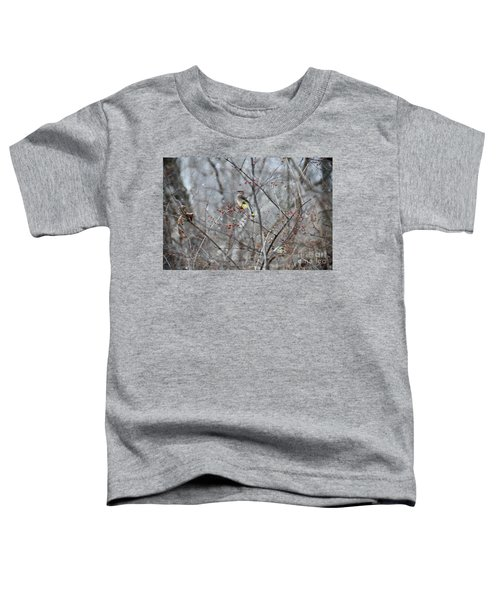 Cedar Wax Wing 3 Toddler T-Shirt