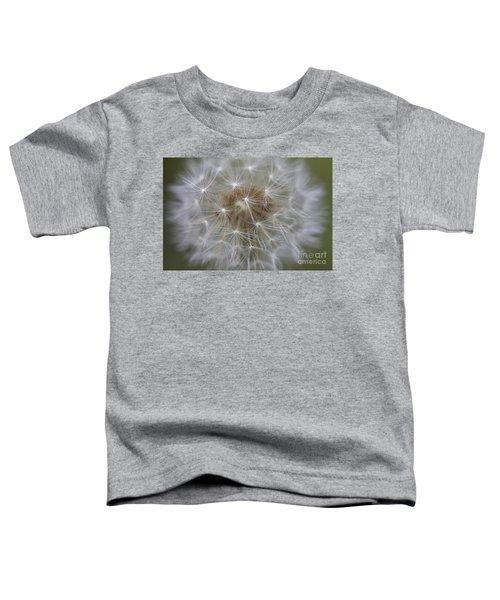 Dandelion Clock. Toddler T-Shirt