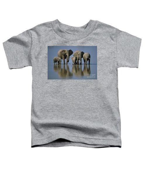 Elephants Toddler T-Shirt