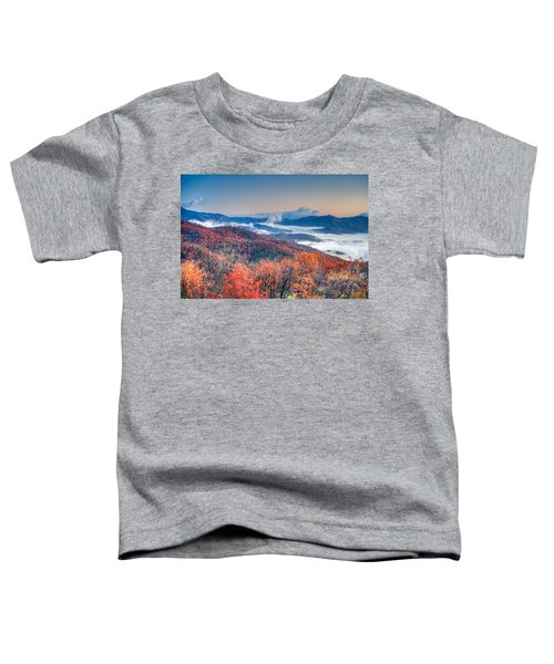 Fall Fog 1 Toddler T-Shirt