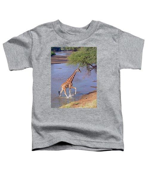 Giraffe Crossing Stream Toddler T-Shirt