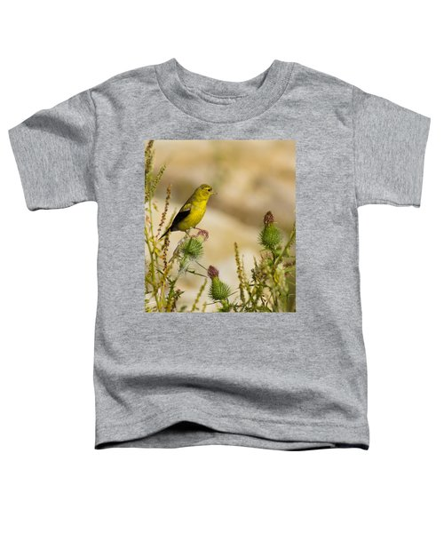 Goldfinch On Lookout Toddler T-Shirt by Bill Pevlor