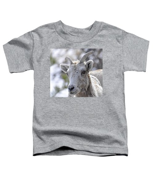 How Close Is Too Close Toddler T-Shirt