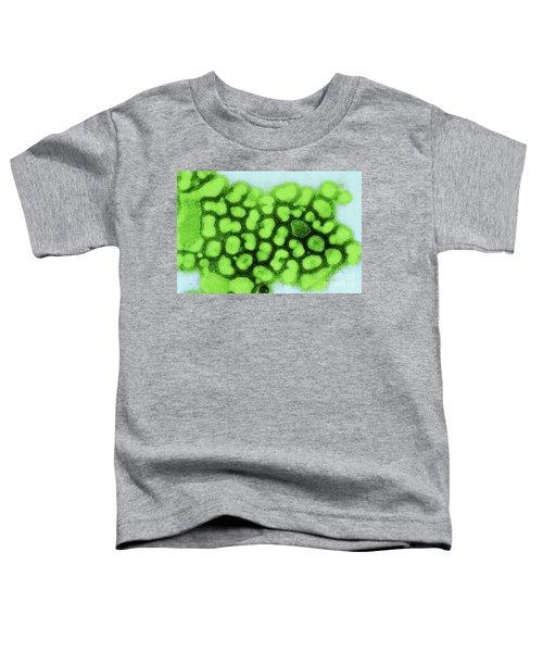 Influenza A Tem Toddler T-Shirt