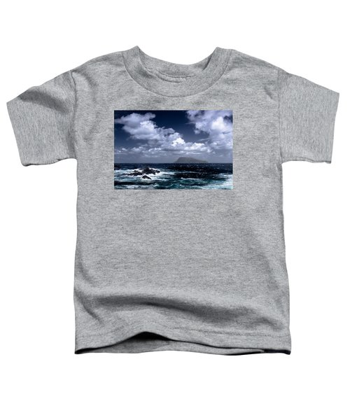 Land In Sight Toddler T-Shirt