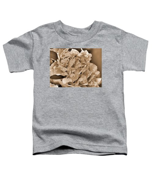 Peony Named Shirley Temple Toddler T-Shirt