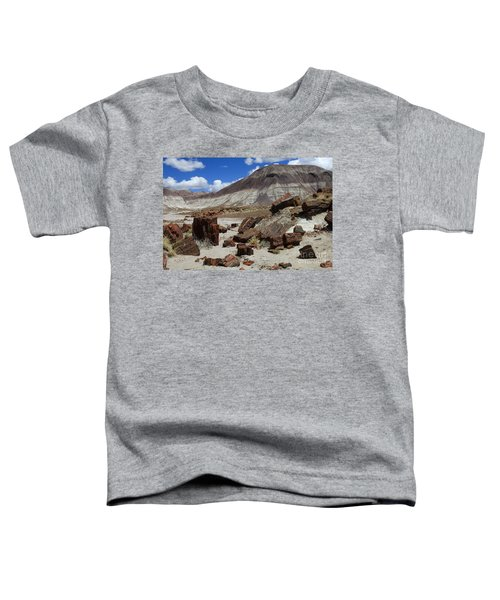Petrified Forest 2 Toddler T-Shirt