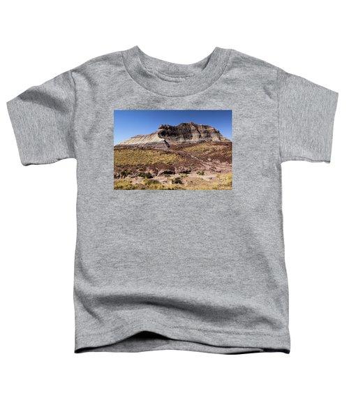 Petrified Forest Badlands Toddler T-Shirt